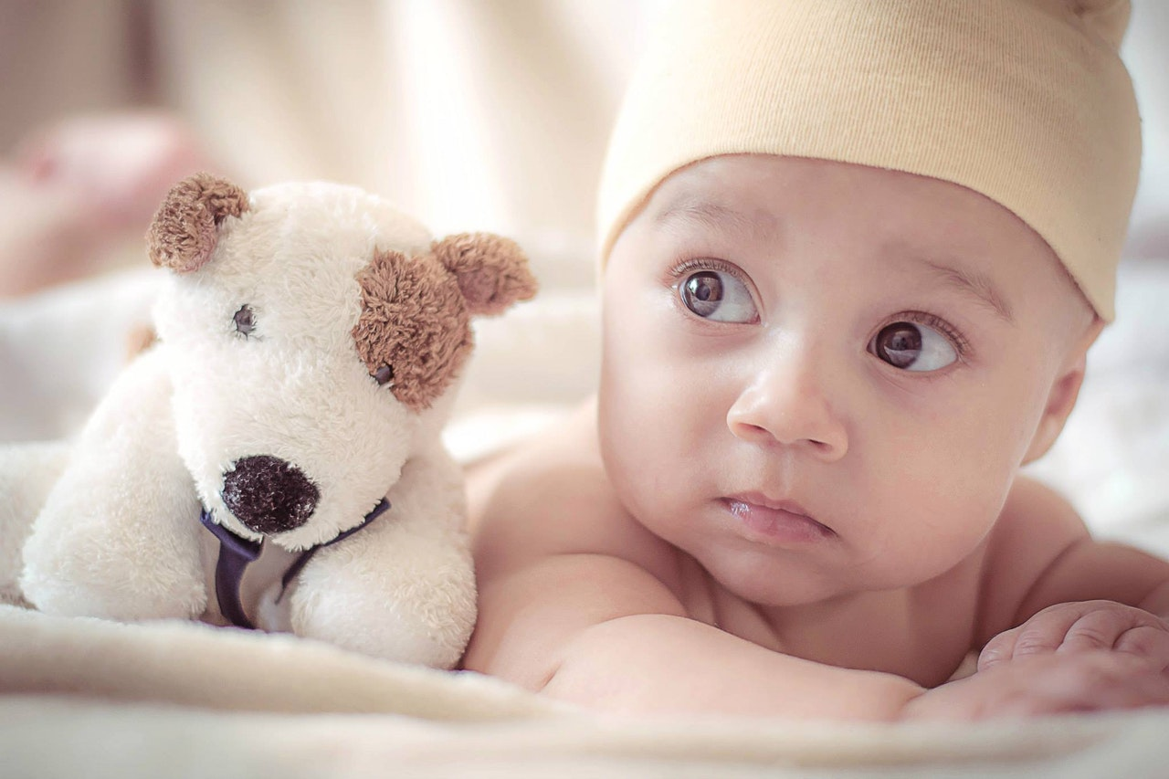baby with a toy dog
